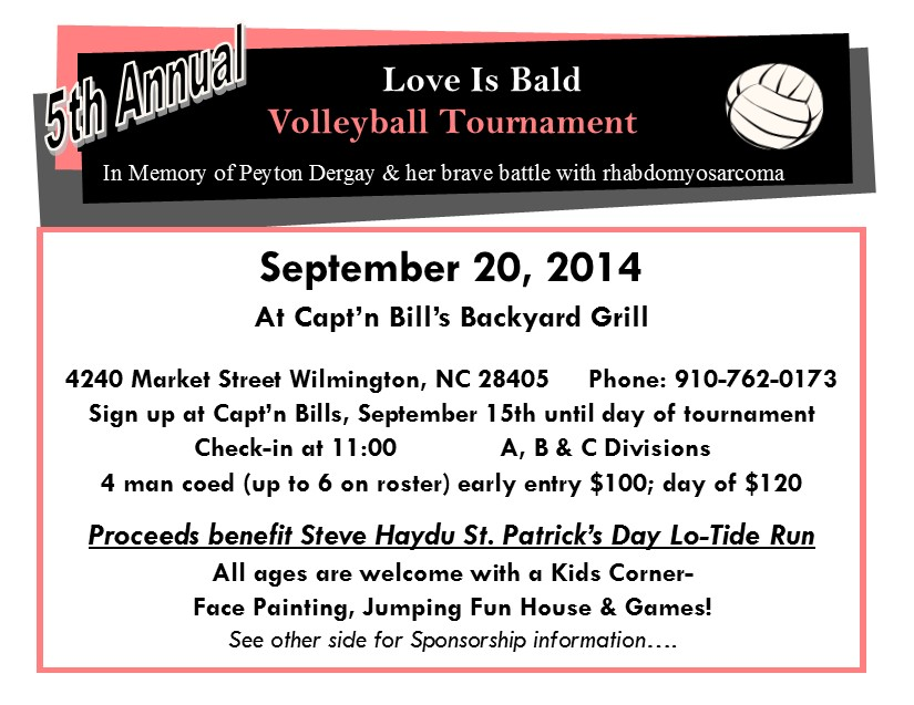 2014 volleyball flyer